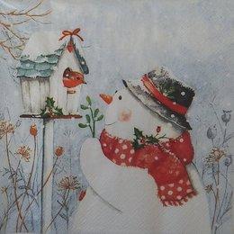 20103. Снеговик и снегирь