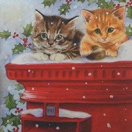20121. Котята во дворе. 5  шт., 24 руб/шт