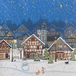 20137. Ночной город  зимой