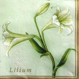 2117. Lilium. 5 шт., 10 руб/шт