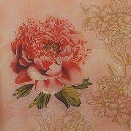 24016. Пион  на розовом. 10 шт., 8  руб/шт