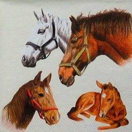 4082. Лошади на белом. 5 шт., 16 руб/шт