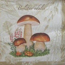 4948. Разные грибы. 5 шт., 17 руб/шт