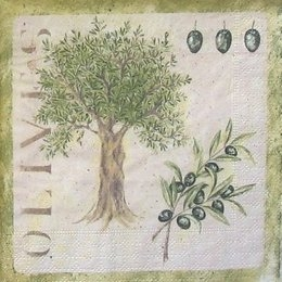 4594. Оливковое дерево