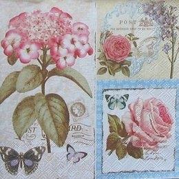 4658. Лирические цветы