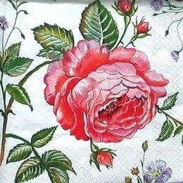 4800. Три розы