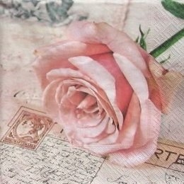 4828. Роза на открытке. 5 штук., 23 руб/шт