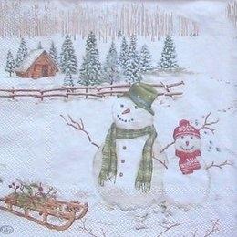 4972. Снеговички