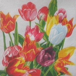 8002. Разноцветные тюльпаны. Двухслойная. Букет