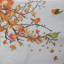 8883. Осенние листья на белом