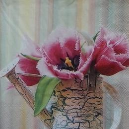 9050. Тюльпаны в лейке.