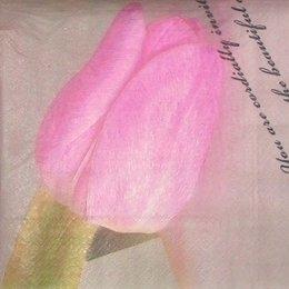 9106. Розовый тюльпан