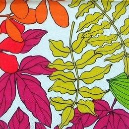 9167. Разноцветные листья на белом.