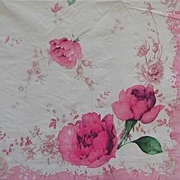 9235. Пионы с розовой каймой.