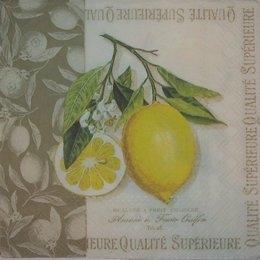 9238. Лимонная веточка