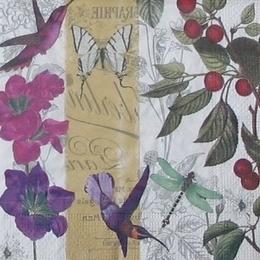 9539. Колибри и бабочка