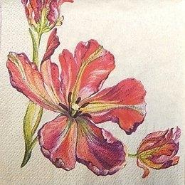 9625. Тюльпаны на светло-желтом