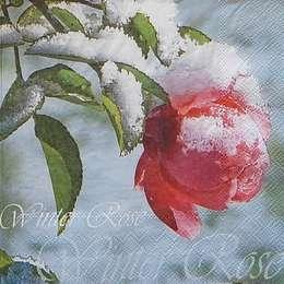 9648. Роза в снегу