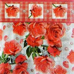 9725. Коралловые розы с бордюром