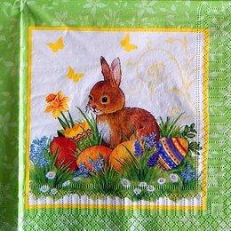 9751. Пасхальный кролик на лугу