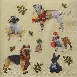 9773. Новогодние собаки