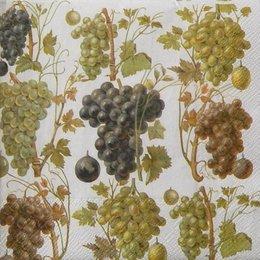 9808. Виноградник