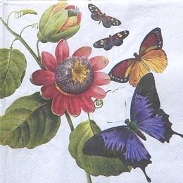 9823. Бабочки в саду