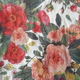 9846. Розы на белом. 20 шт., 5 руб/шт
