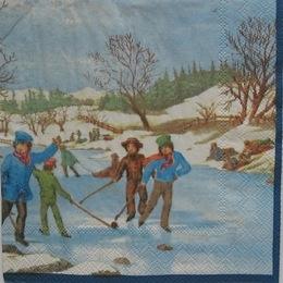 226. Катанье на коньках