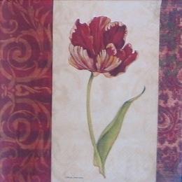 167. Бордовые тюльпаны