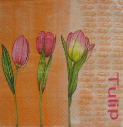 522. Тюльпаны на оранжевом