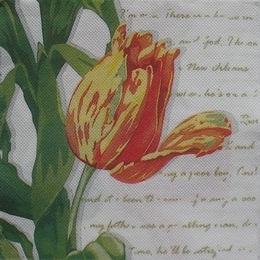 1122. Тюльпаны на белом и письмена. Двухслойная.