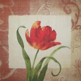943. Тюльпан на квадрате