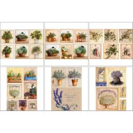 11538. Набор декупажных карт «Травы Прованса»