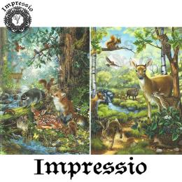15461. Декупажная карта Impressio, плотность 45 г/м2