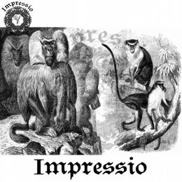 7861. Декупажная карта  Impressio, плотность 45 г/м2