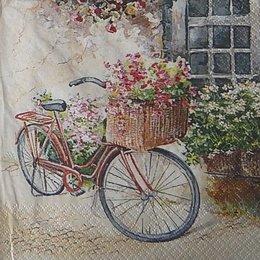 12115. Велосипед.