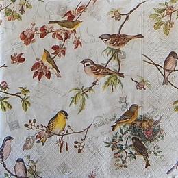 12523. Птицы на ветках с птенцами