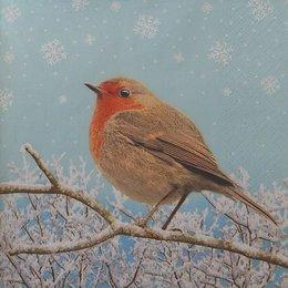 20111.  Снегирь на ветке