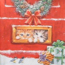 20115. Рождественские котята