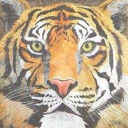 20201. Тигр. 5 шт., 20 руб/шт