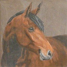 20203. Лошадь. 5 шт., 20 руб/шт