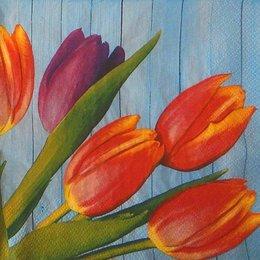 24102. Тюльпаны на синем. 5 шт., 10 руб/шт