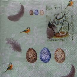 24376. Птицы и перья на зеленом