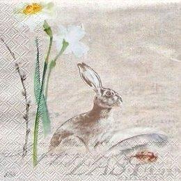 4913. Нарцисс и заяц. 5 шт., 24 руб/шт