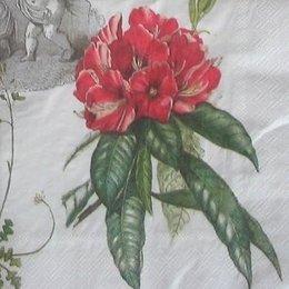 8050. Ангелы, цветы и птицы.  15 шт., 12 руб/шт