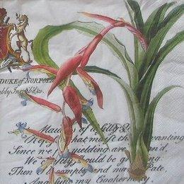 8052. Необычные цветы на письменах