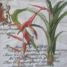 8052. Необычные цветы на письменах. 20 шт., 7 руб/шт