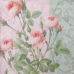 8259. Розы на бледно-розовом. 15 шт., 6 руб/шт