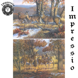 16207. Декупажная карта Impressio, плотность 45 г/м2